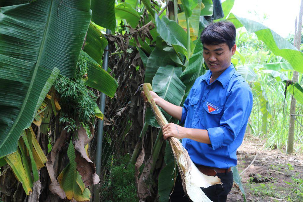 2 dự án của thanh niên Đồng Nai vào bán kết cuộc thi Dự án khởi nghiệp sáng tạo thanh niên nông thôn năm 2020