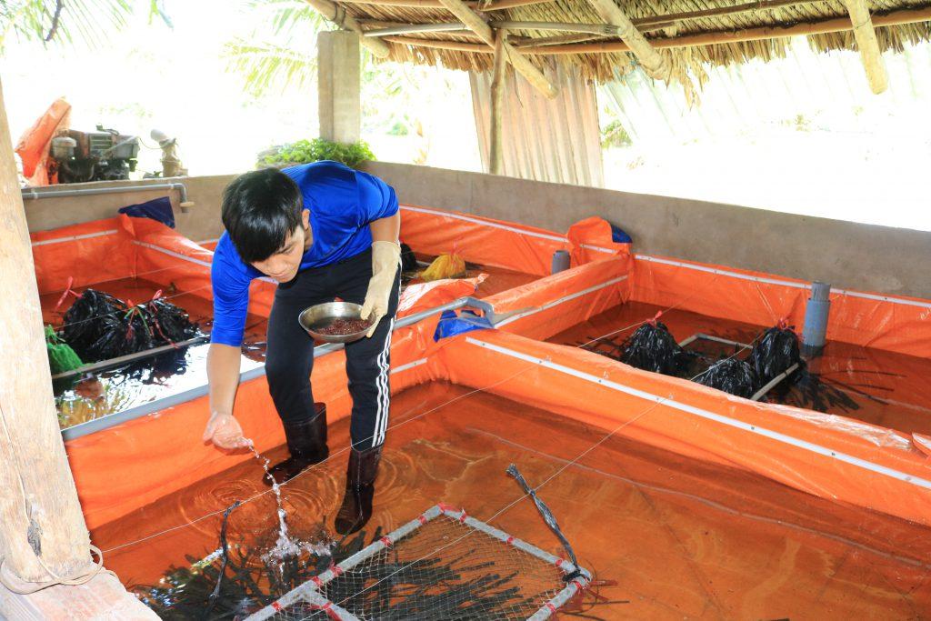 24 dự án vào bán kết cuộc thi Thanh niên nông thôn sáng tạo khởi nghiệp với chương trình OCOP