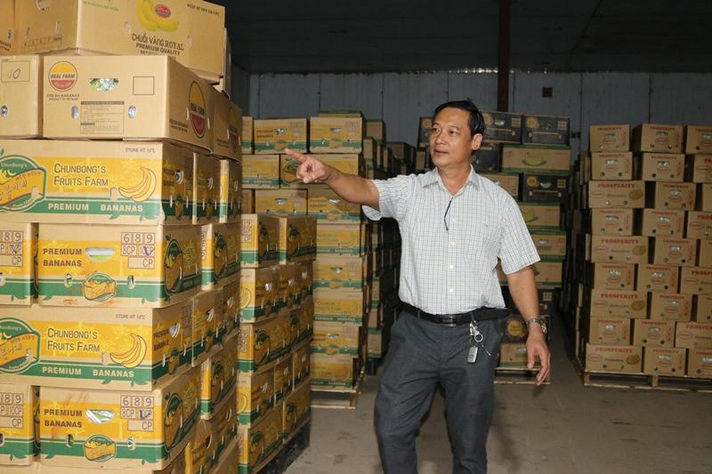 Tiên phong xuất khẩu chuối theo đường chính ngạch