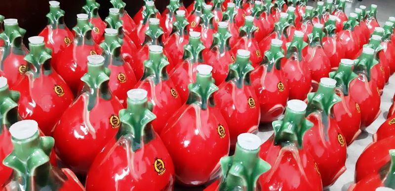 Nước ép thanh long ruột đỏ AnNa: Chiến lược tiếp cận thị trường đồ uống