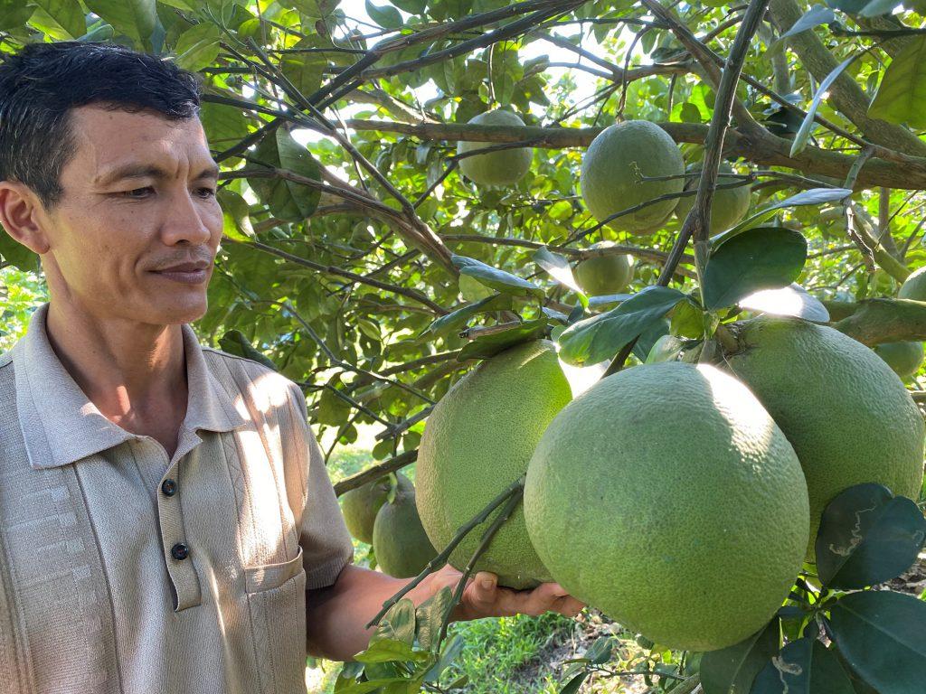 """Mã số vùng trồng, điều kiện cần để nông sản Định Quán """" xuất ngoại"""""""