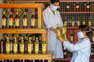Chọn nghề nuôi ong để khởi nghiệp